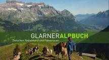 Titelbild_Alpbuch_bearbeitet-1