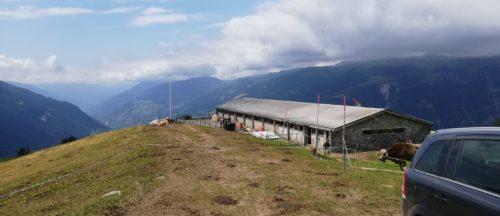 200423_Alpe Frid VS
